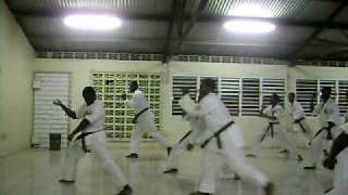 First Ja. Zen Do Kai Kan Green Belt Kata