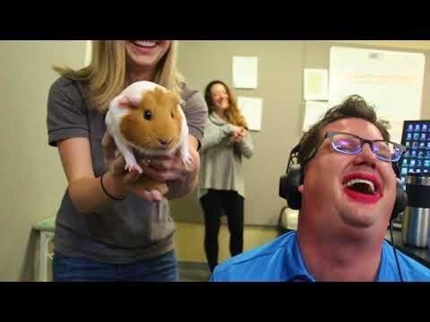 Tammy Makes Kipper Kiss A Pig