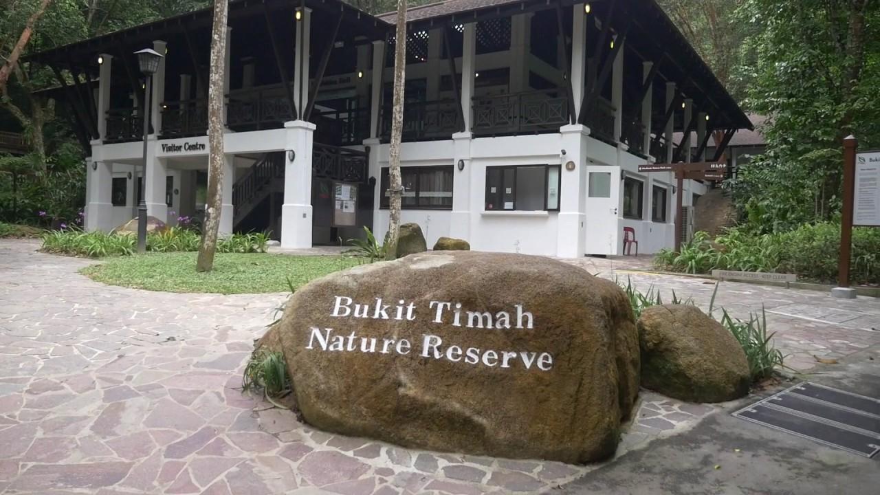 Explore the revamped Bukit Timah Nature Reserve - YouTube