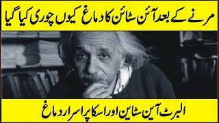 The Tragic Story of How Einstein's Brain Was Stolen In Urdu Hindi