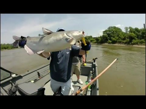 Drifting MO River Blue Catfish KCMO USA