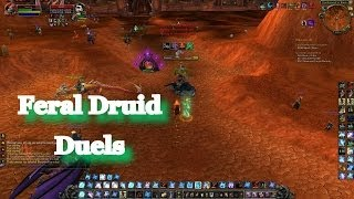 WOW Feral Druid Duels PvP 5.4 MOP