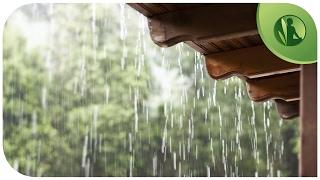 ☁ Barulho da Chuva para Sono Profundo para Relaxar e Meditar, Sons da Natureza com Barulho de Chuva