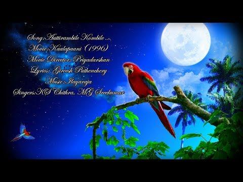 Aattirambile Kombile | Song With Malayalam Lyrics | |HD| Kaalapaani