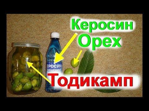 Как приготовить тодикамп в домашних условиях