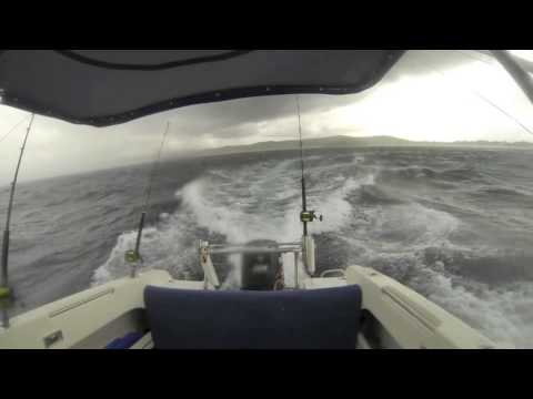The Cabo Hatteras Billfish Shootout