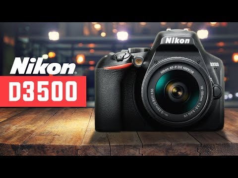 Nikon D3500 Review - WATCH BEFORE YOU BUY