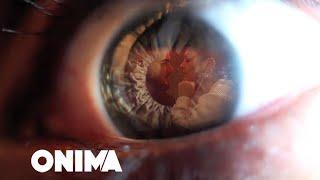 Смотреть клип Fifi - Maniak I Dhimbjes