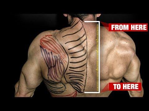 How to Get Bigger Traps (GUARANTEED!!)