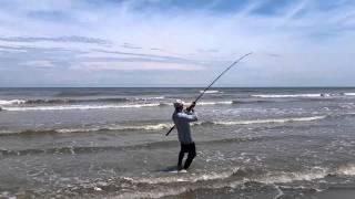 Galveston TX Surf Fishing 6/1/15 catch & release