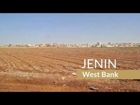 Using Treated Wastewater to Revive Palestine Agriculture