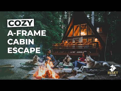 Cozy A Frame Cabin + EPIC Hiking With Dogs | HUSKY SQUAD