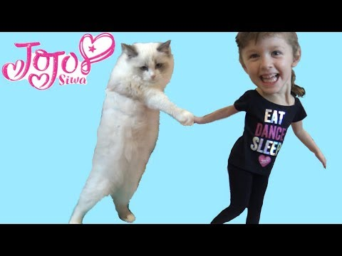 Thumbnail: FUN JOJO SIWA DANCE GAME + A DANCING CAT! Family fun playtime