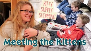 It's Friends Meeting Our Kittens + Kitten Supply Shopping!