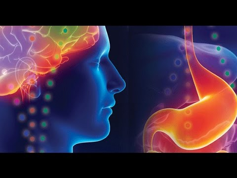 THE ISSUES: Gut bacteria linked to depression even autism