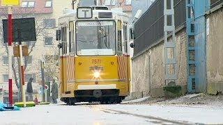 Гонки трамваев в Будапеште: победили французы