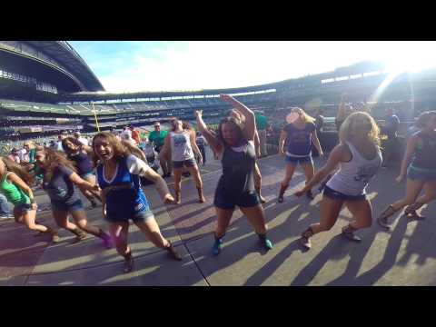 Kick the Dust Up Line Dance at Mariners Game