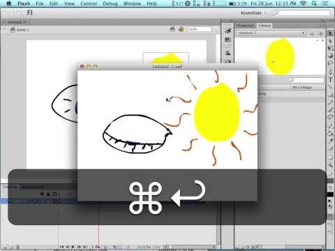 9 Digital Media - Flash Animation