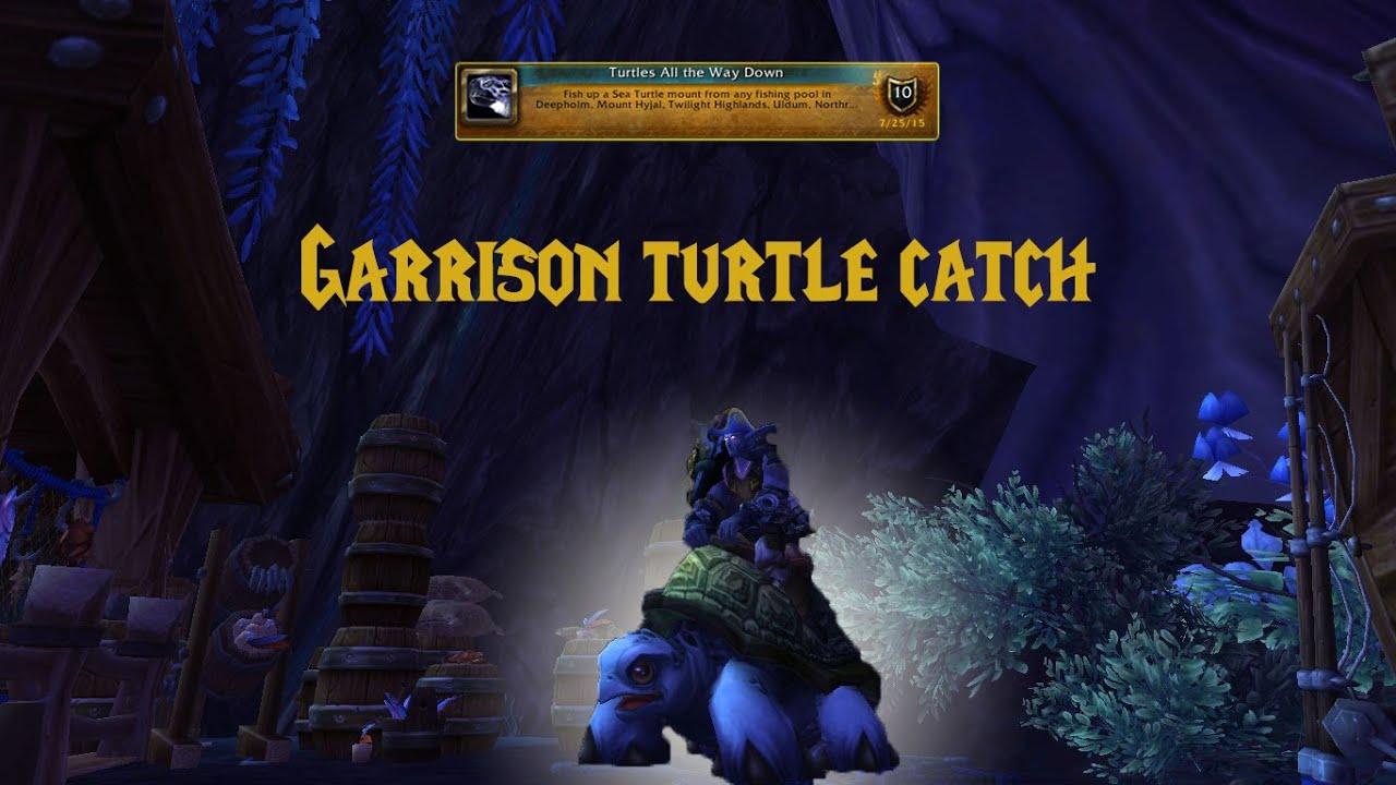 Wow Garrison Sea Turtle Mount Catch You