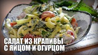 Салат из крапивы с яйцом и огурцом — видео рецепт