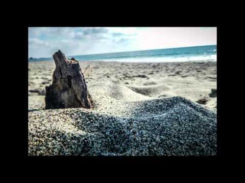 Noble Oak - Coastline