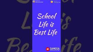 School life is best