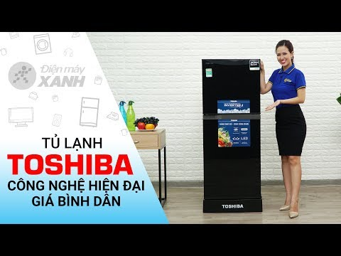 Tủ Lạnh Toshiba 186 Lít GR-M25VMBZUKG - Công Nghệ Hiện đại, Giá Bình Dân   Điện Máy XANH