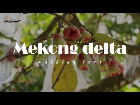 Mekong Delta Walking tours with local private guides