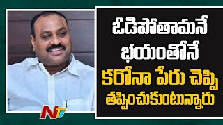 Atchannaidu Face to Face After SEC Meeting | Local Body Elections | Ntv