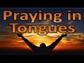 Praying in Tongues, Chinese Subtitles