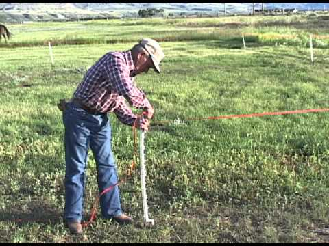 Sorenson Property   Managing Grazing on Small Acreages Part 3