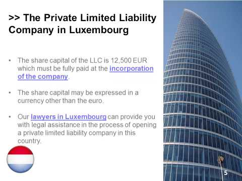 Types of Companies in Luxembourg