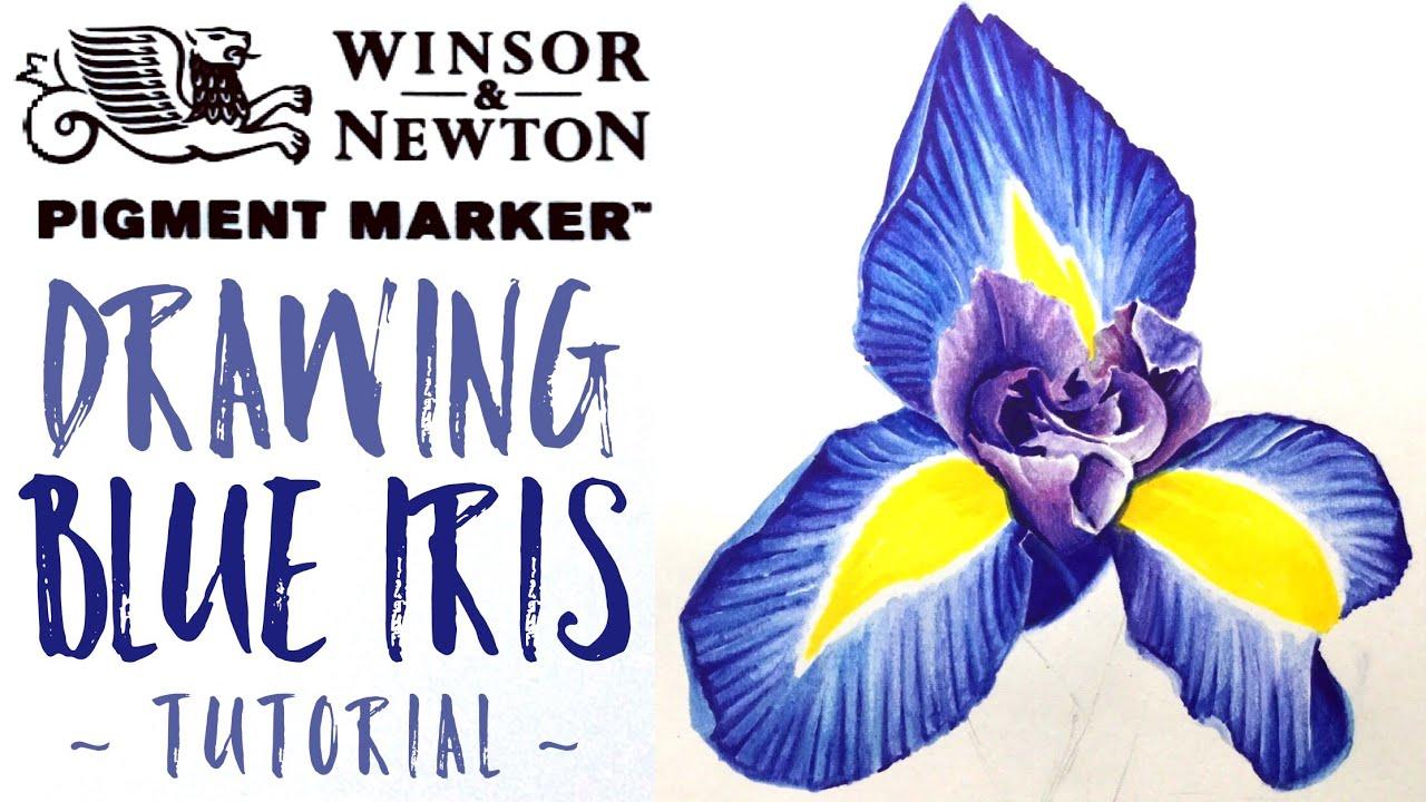 Winsor Newton Pigment Markers