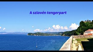 szlovénia ízületi kezelés)
