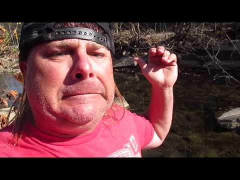 Donnie Baker Blasts Trump Protesters with an Emergency Edition of River Confessions!