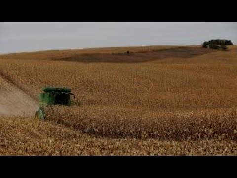 Tariff concerns weighing on US farmers