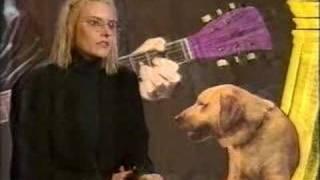 aimee mann - The Music Biz