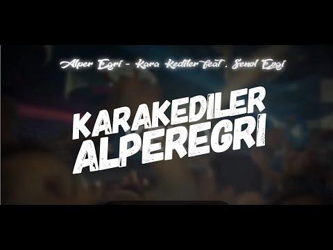 Alper Eğri - Kara Kediler (Feat. Şenol Evgi) #Remix Version