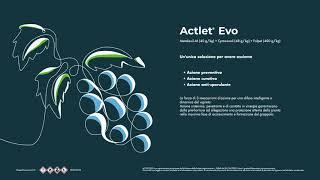 Actlet® EVO: fungicida endoterapico e di contatto per la vite da vino e tavola contro la peronospora