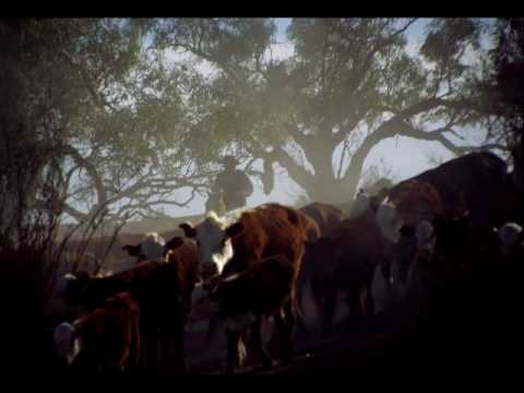 Great Australian Outback Cattle Drive--Birdsville track