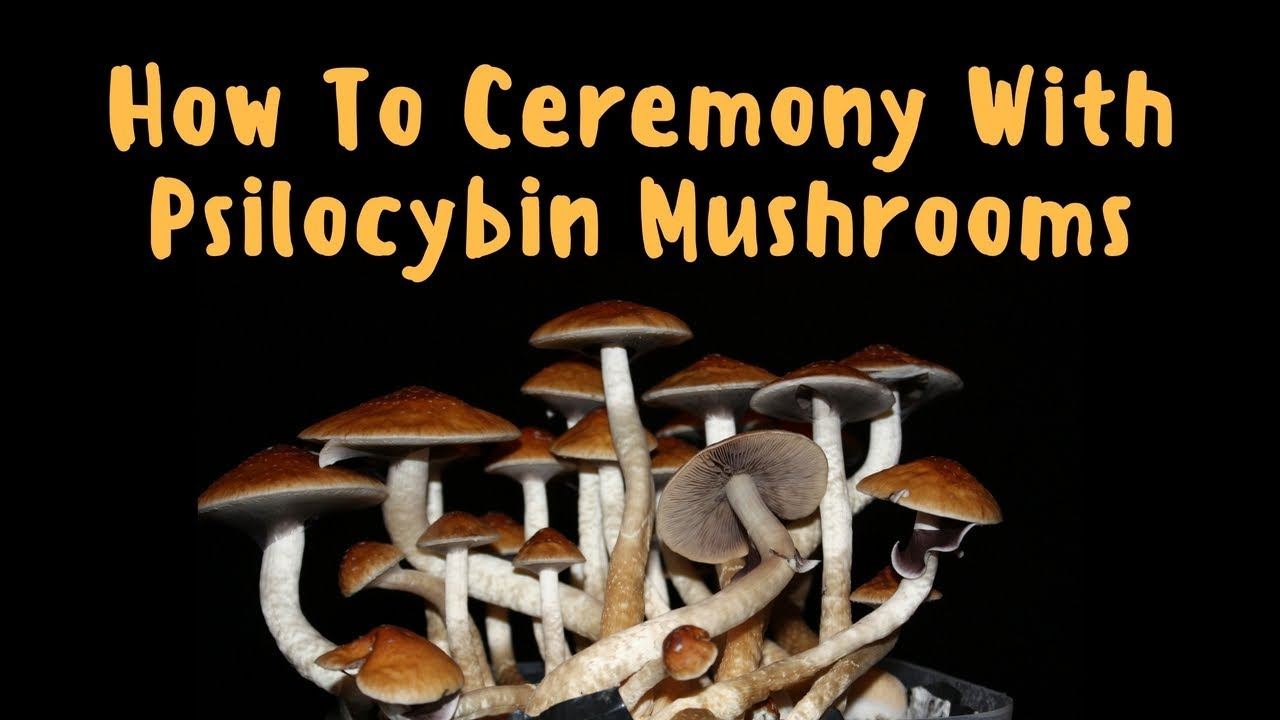 How To Ceremony with Psilocybin Mushrooms