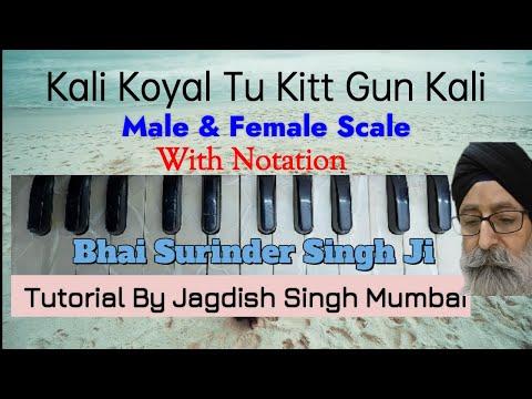Learn  KALI KOYAL  ( Bhai Surinder Singh ji Jodhpuri ) -- Notation