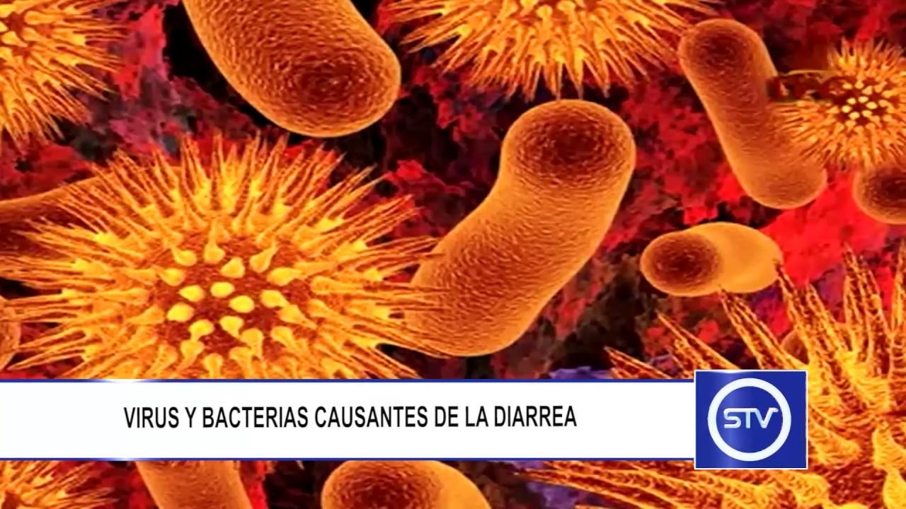 diarrea bacteriana