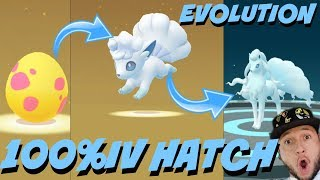 I HATCHED THE* RAREST ALOLAN*POKEMON *100%IV RARE HATCH* FROM  22x EGGS IN POKEMON GO !