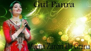 Download Hindi Video Songs - Gul Panra - Meena Zarori Da Grana