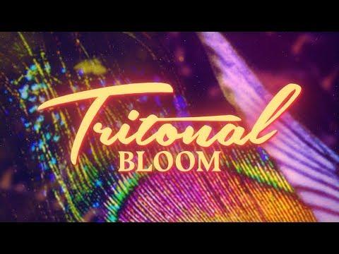 Tritonal - Bloom