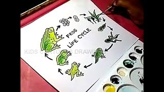 How to Draw Frog Life Cycle Drawing for Kids
