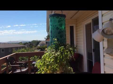 5 Rland balcony