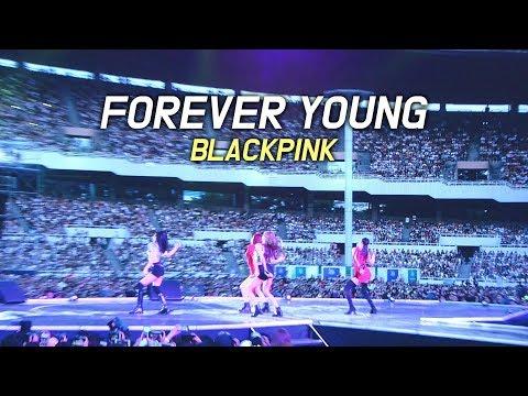 180622 블랙핑크 BLACKPINK : Forever Young 공연 중단 : LED FANCAM : LOTTE FAMILY CONCERT