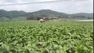 Helicopter Agriculture Drone Plant Protection Drone Helicopter Spray to Control Tobacco Black Shank